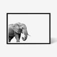 ELEPHANT WALL ART PRINT, BLACK AND WHITE ANIMAL PHOTOGRAPHY with black frame