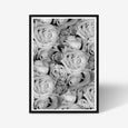 Roses floral wall art print black and white botanical photography with black frame