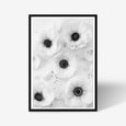 Anemone floral wall art print black and white botanical photography with black frame