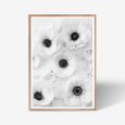 Anemone floral wall art print black and white botanical photography with oak frame