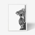 Koala animal wall art print black and white animal photography with oak frame