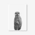 Meerkat animal wall art print black and white animal photography