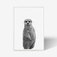 Meerkat animal wall art print black and white animal photography with white frame