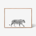 Lioness animal wall art print black and white animal photography with oak frame