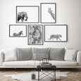 Picture frame spacing animal and floral wall art