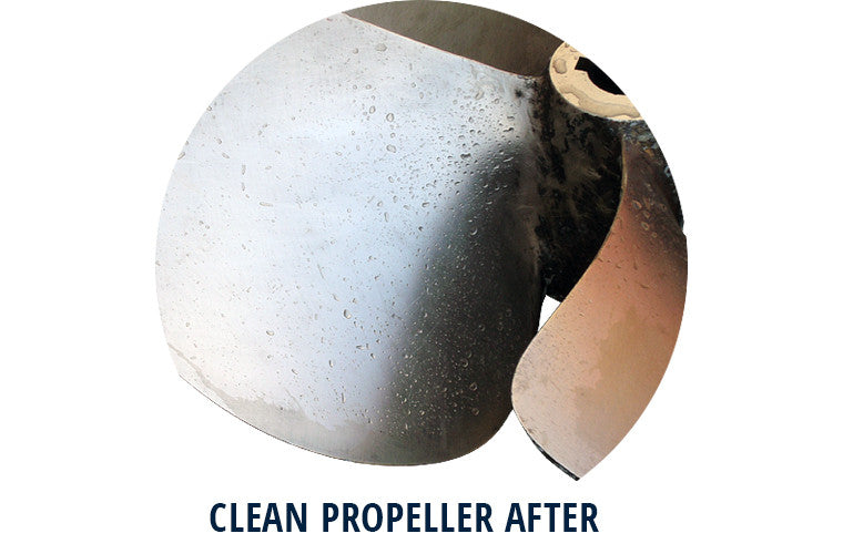 Clean prop after Barnacle Dissolver