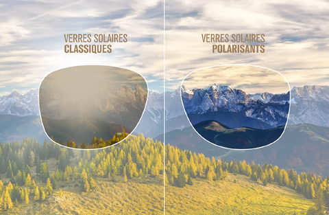 verres polarisants