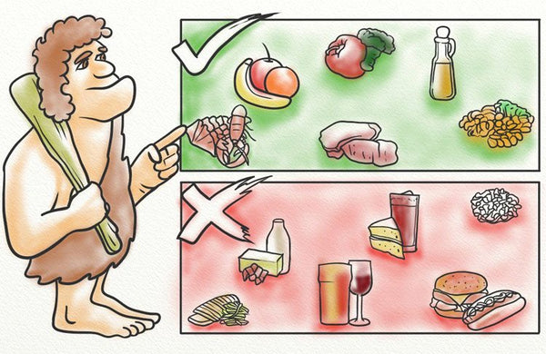 Evolution and diet
