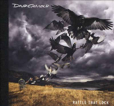 David Gilmour - Rattle That Lock Vinil - Salvaje Music Store MEXICO
