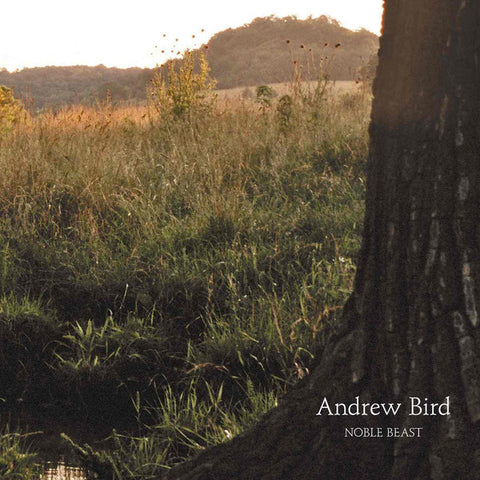 Andrew Bird - Noble Beast Vinil - Salvaje Music Store MEXICO
