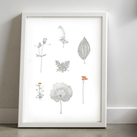 Botanical Assembly Open Edition Print