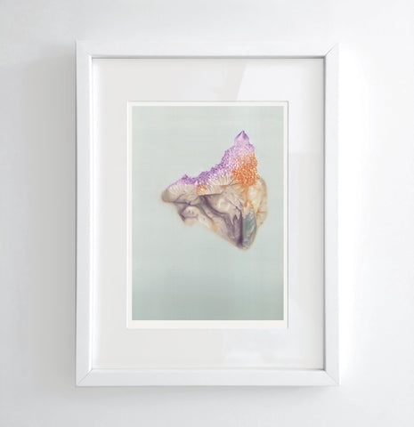 Cactus Amethyst - Limited edition print