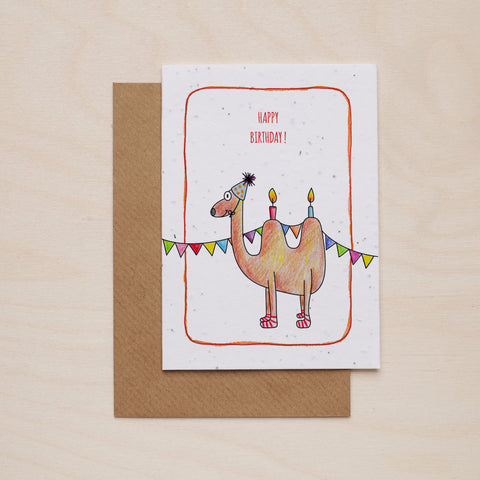 Happy birthday camel - Seeded card