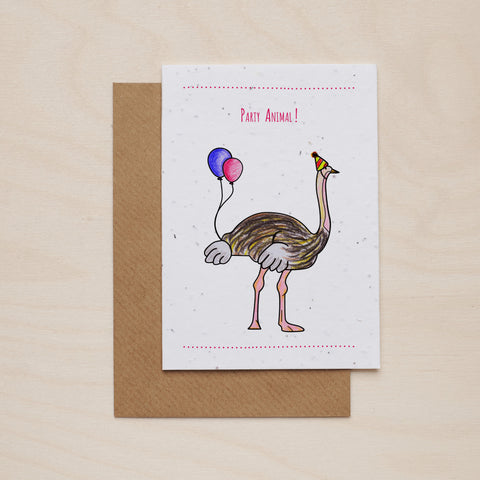 Party animal - Seeded card