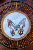 Vintage 70's Hand-made Butterfly & Bamboo Bowl - Penny Bizarre - 2