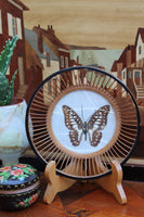Vintage 70's Hand-made Butterfly & Bamboo Bowl - Penny Bizarre - 1