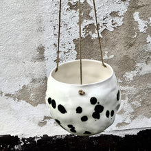 Load image into Gallery viewer, Snowball hanger/flowerpot, dalmatian