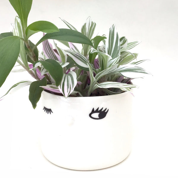 Nosy flower pot, medium size, one open eye