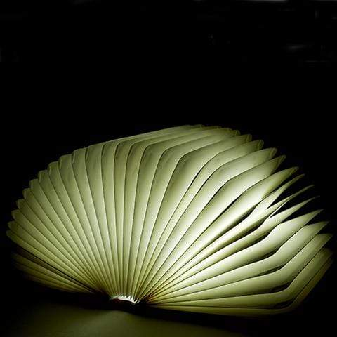 MAGICAL LIGHT BOOK