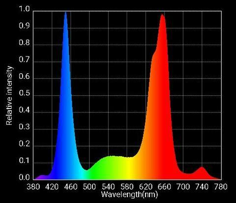 Optic 6 Supplementary Diode Only Spectrum