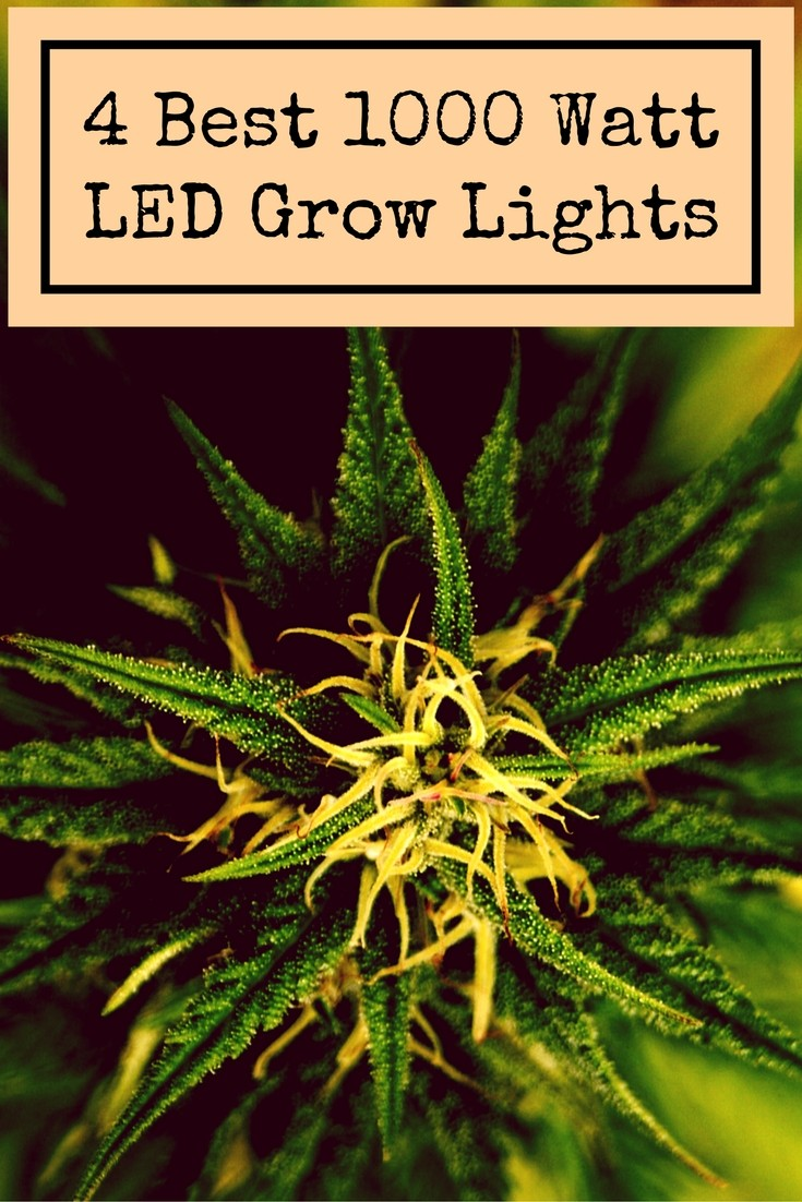 1000 Watt LED Grow Light - Top 4 Lights For Sale in 2019