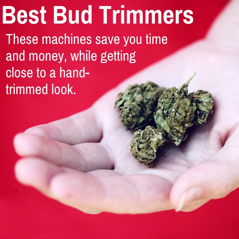 Top Marijuana Trimming Machines