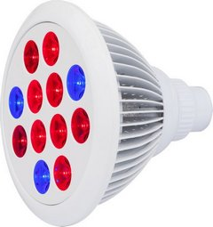 Cirrus EVO LED grow light bulb