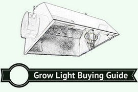 Best Grow light for weed buying guide