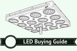 choose the best led grow light buying guide