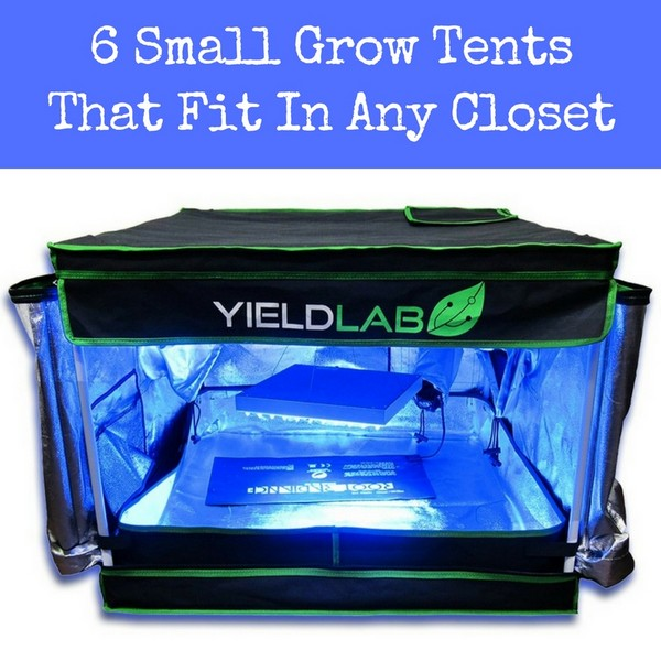 Small grow tent for any closet  sc 1 st  Grow Light Central & Small Grow Tent - The 6 Best Mini Tents For Clones And Small ...