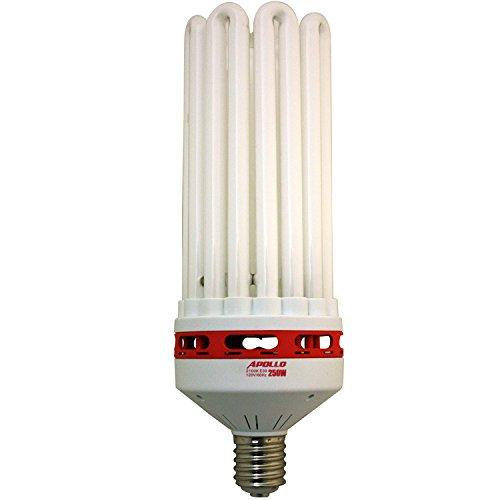 Apollo Horticulture 250 Watt CFL 6400K Vegging Bulb
