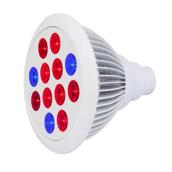 Cirrus Evo LED Bulb Grow Light