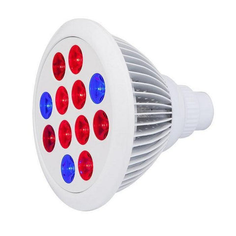 Image of Cirrus Evo LED Bulb Grow Light