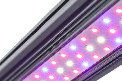Kind LED X40 / X80 Bar Light (Veg or Bloom Spectrum)