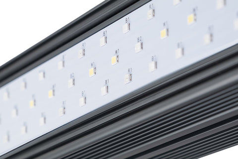 Kind LED XD75 / XD150 Bar Light (Veg or Bloom Spectrum)