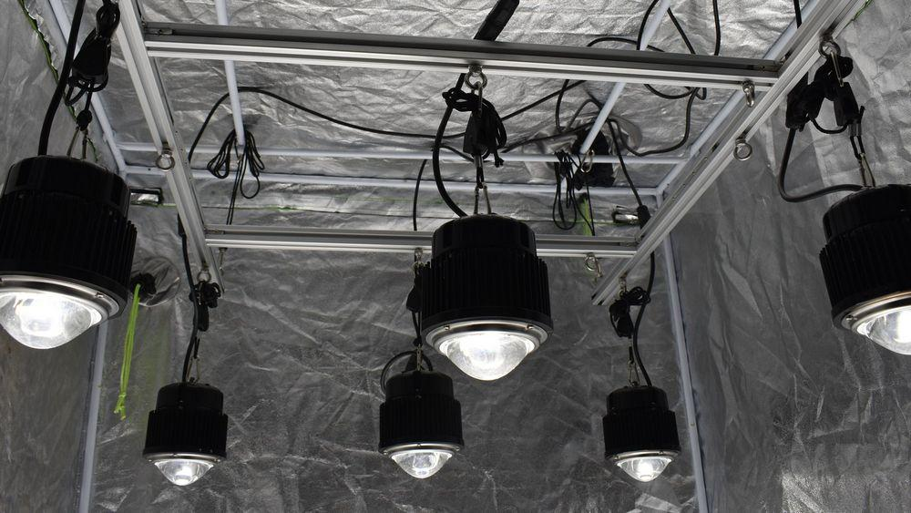 4 by 4 Foot Optic Hang Kit (Incl. 6x 54 Watt Optic 1 Lights)