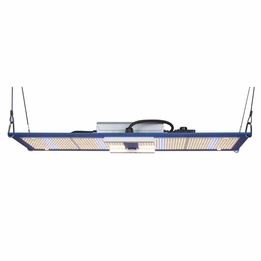 Horticulture Lighting Group HLG 300L V2 BSpec (Veg)
