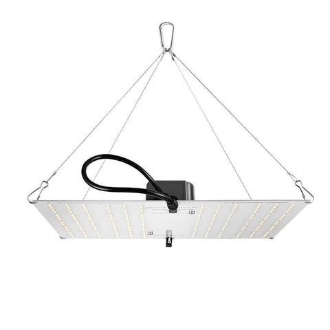 Horticulture Lighting Group HLG 100 V2