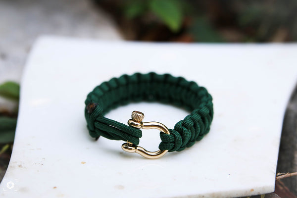 """Oz"" Bracelet Gold Hardware - Osiris & Co."