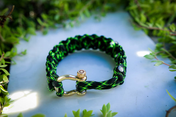 """Poison"" Bracelet Gold Hardware - Osiris & Co."