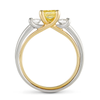 Diana Vincent Entre Nous Three Stone Engagement Ring