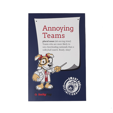 Annoying Teams Volleyball Definition Poster