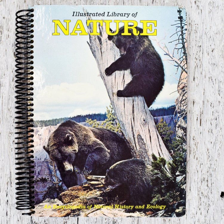 Vintage Library of Nature notebook