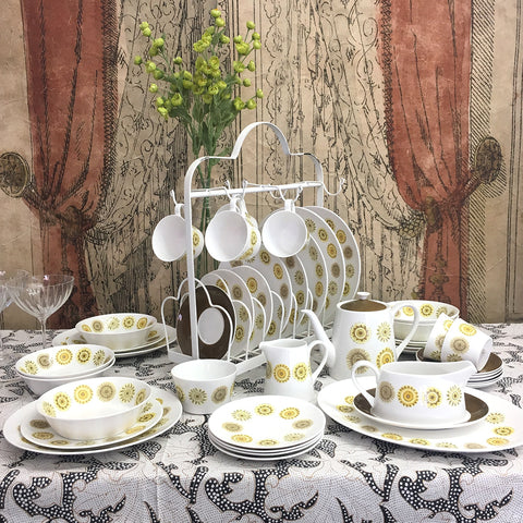 Vintage Royal Tuscan Dinner Set. Seasons.