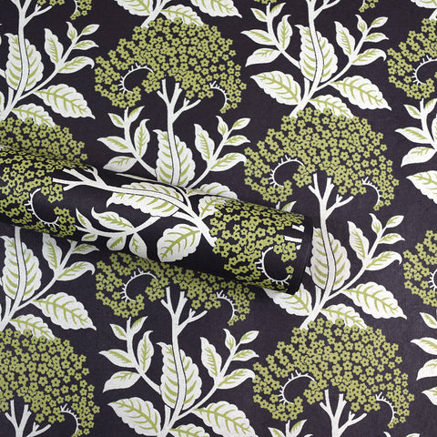 Wrapping Paper. Green and White Floral Pattern.
