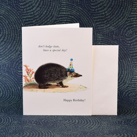 Phun House Card, Happy Birthday Hedgehog.