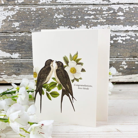 Phun House Card, Congratulations, Love Birds.