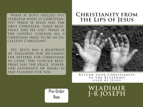 Christianity From The Lips Of Jesus: Return your Christianity to the Blueprint used by Jesus