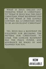 Christianity From The Lips Of Jesus: Return your Christianity to the Blueprint used by Jesus (Vol 1)
