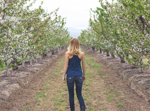 Photo taken in endless almond trees near Arvin CA